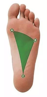 Foot Graph